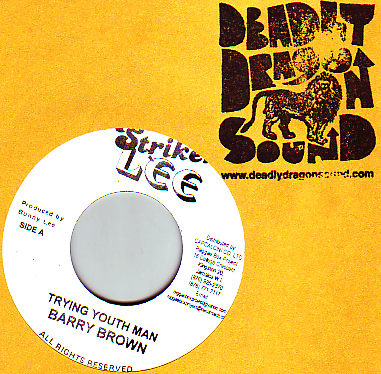 Barry Brown - Trying Youthman