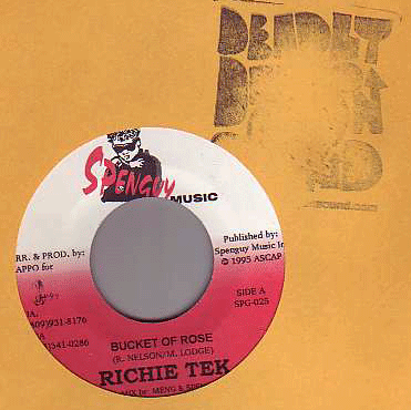 Richie Tek - Bucket of Rose