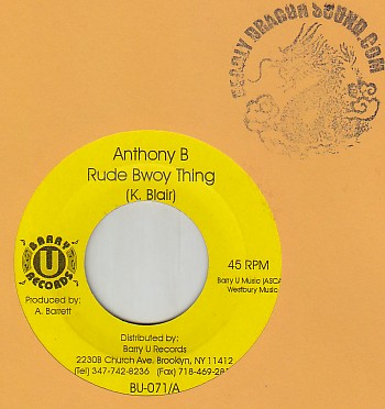 Anthony B - Rude Bwoy Thing