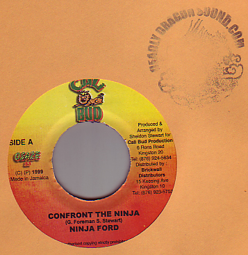 Ninja Ford - Confront The Ninja