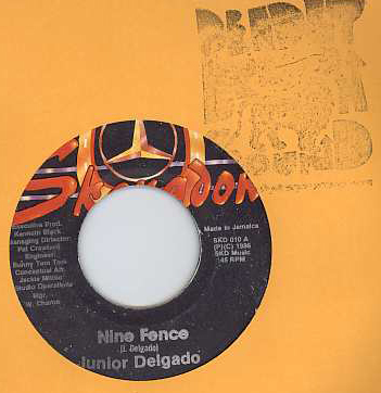 Junior Delgado - Nine Fence