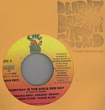 Spragga & Assassin & More! - Everyday Is The Girls Dem Day