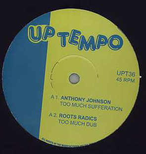 Anthony Johnson / Ashanti Waugh - Too Much Sufferation / Jah Love