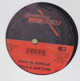 Sizzla & Jah Cure - King In Jungle