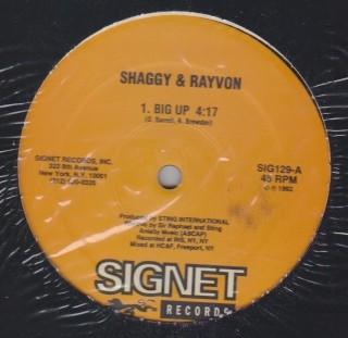 Shaggy & Rayvon / Screechy Dan - Big Up / Skin Out